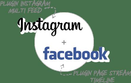 Social Plugin